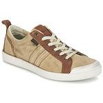 Sneakers Kickers TRIDENT