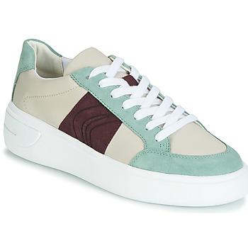 Skor Dam Sneakers Geox D OTTAYA Krämfärgad / Grön