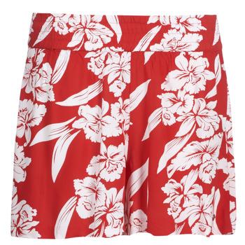 textil Dam Shorts / Bermudas Volcom ALOHA HA SHORT Röd