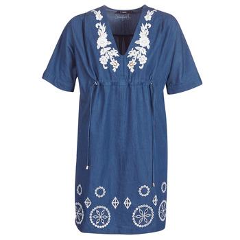 textil Dam Korta klänningar Desigual ELECTRA Marin