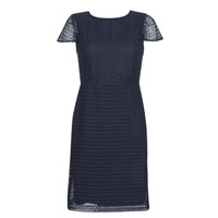 textil Dam Korta klänningar Lauren Ralph Lauren NAVY SHORT SLEEVE DAY DRESS Marin