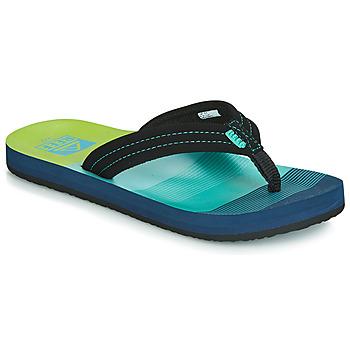 Skor Pojkar Flip-flops Reef KIDS AHI Blå / Grön