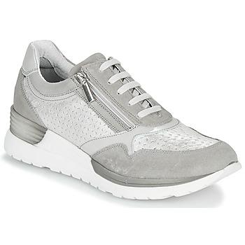 Skor Dam Sneakers André ARLE Grå