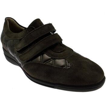 Skor Dam Sneakers Calzaturificio Loren LOL8075m marrone