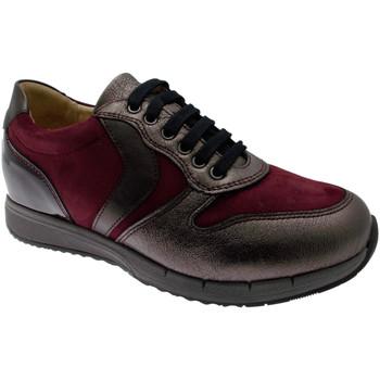 Skor Dam Sneakers Calzaturificio Loren LOC3818bo tortora