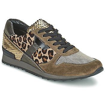 Skor Dam Sneakers Kennel + Schmenger LIZAN Kamel
