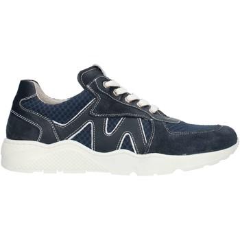 Skor Pojkar Sneakers Nero Giardini P933571M Blue