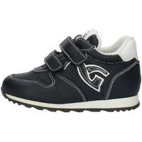 Skor Pojkar Sneakers Nero Giardini P724180M Blue