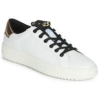 Skor Dam Sneakers Geox D PONTOISE Vit / Mässingsfärg