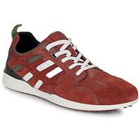 Skor Herr Sneakers Geox U SNAKE.2 Brun / Tegel