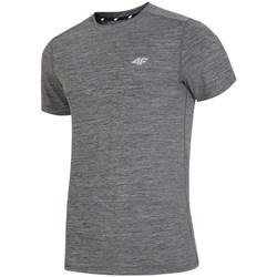 textil Herr T-shirts 4F H4L19 TSMF002 Grafit
