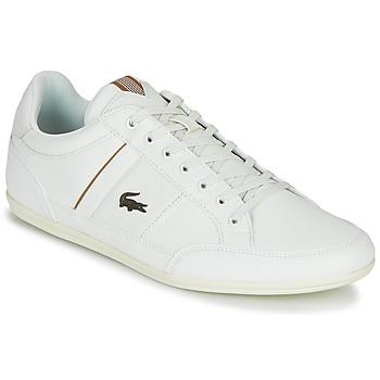 Skor Herr Sneakers Lacoste CHAYMON 319 1 Vit