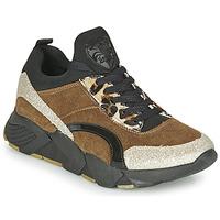 Skor Dam Sneakers Philippe Morvan VERSO V2 GLITTER FIN Brun / Svart