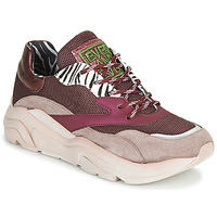Skor Dam Sneakers Meline JOLI Rosa / Beige