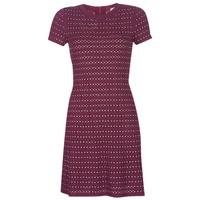 textil Dam Korta klänningar MICHAEL Michael Kors EMBELL FLARE MINI DRS Bordeaux