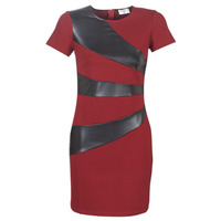 textil Dam Korta klänningar Moony Mood LIVEO Bordeaux / Svart