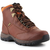 Skor Dam Boots Ariat Berwick lace GTX Insulated 10016298 brown