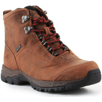 Skor Dam Vandringskängor Ariat Trekking shoes  Berwick Lace Gtx Insulated 10016229 brown