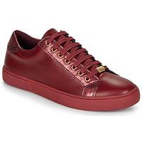 Skor Dam Sneakers André BERKELEY Bordeaux