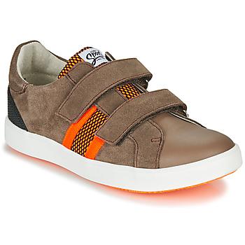 Skor Pojkar Sneakers GBB AVEDON Brun