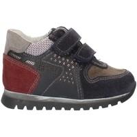 Skor Pojkar Sneakers Nero Giardini A724331M Blue Gray and Bordeaux