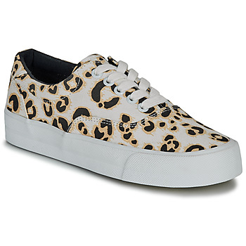 Skor Dam Sneakers Superdry CLASSIC LACE UP TRAINER Leopard