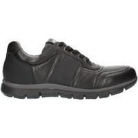 Skor Herr Sneakers Nero Giardini A800482U Black