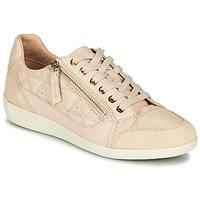 Skor Dam Sneakers Geox D MYRIA Beige