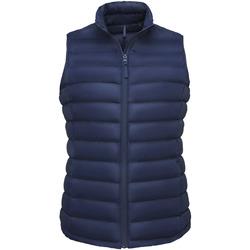textil Dam Täckjackor Sols WILSON BW FEATHERS Azul