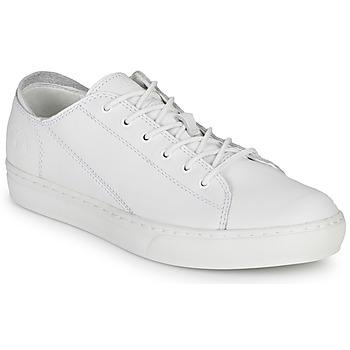 Skor Herr Sneakers Timberland ADV 2.0 CUPSOLE MODERN OX Vit