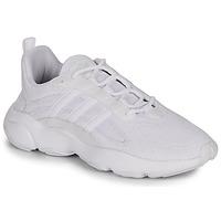 Skor Herr Sneakers adidas Originals HAIWEE Vit