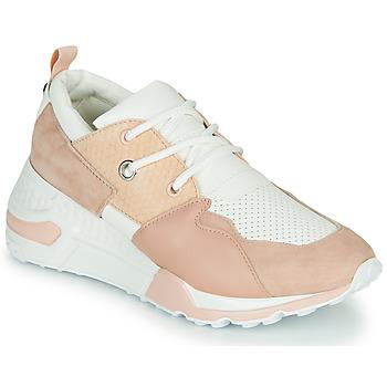 Skor Dam Sneakers Steve Madden CLIFF Rosa