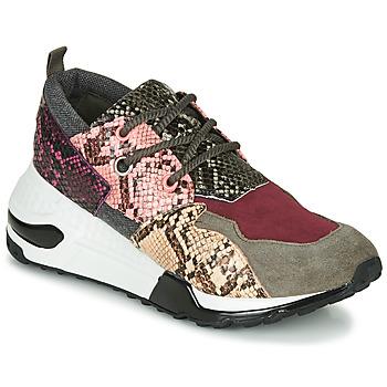 Skor Dam Sneakers Steve Madden CLIFF Flerfärgad