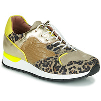 Skor Dam Sneakers Mjus CAST Kaki / Leopard