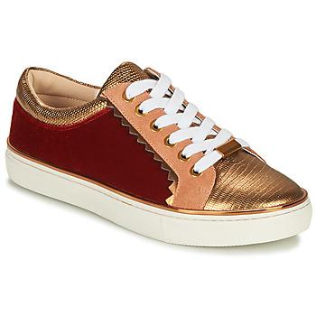Skor Dam Sneakers André LA FUNAMBULE Brons