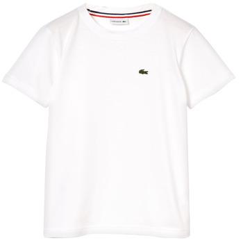 textil Pojkar T-shirts Lacoste NAE Vit