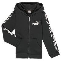 textil Pojkar Sweatshirts Puma AMPLI HOOD JKT Svart