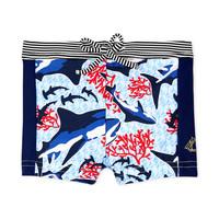 textil Pojkar Badbyxor och badkläder Petit Bateau FEUILLAGE Flerfärgad