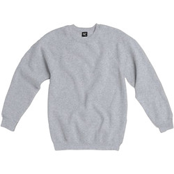 textil Herr Sweatshirts Sg Raglan Ljus Oxford