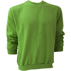 textil Herr Sweatshirts Anvil 71000 Grönt äpple