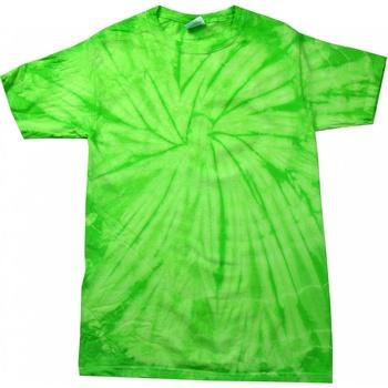 textil Barn T-shirts Colortone Spider Spindelkalk