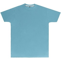 textil Herr T-shirts Sg Perfect Himmelblått