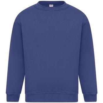 textil Herr Sweatshirts Absolute Apparel Sterling Kungliga
