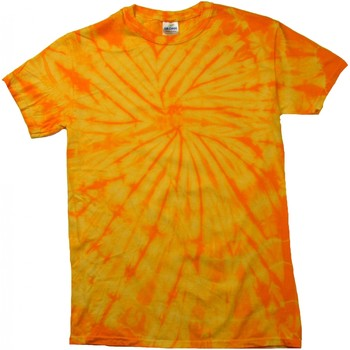 textil Barn T-shirts Colortone Spider Spindelguld