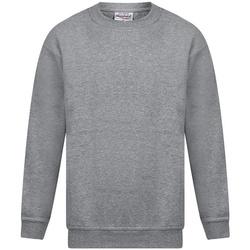 textil Herr Sweatshirts Absolute Apparel Magnum Sport Grå