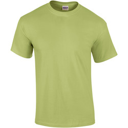 textil Herr T-shirts Gildan Ultra Pistachio