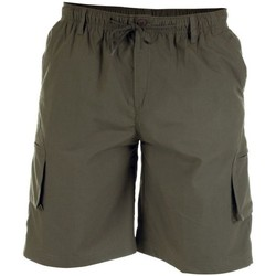 textil Herr Shorts / Bermudas Duke  Khaki