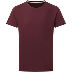 textil Herr T-shirts Sg Perfect Bourgogne