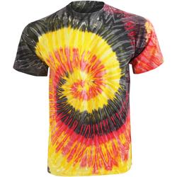textil Dam T-shirts Colortone Rainbow Kingston
