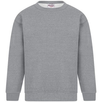 textil Herr Sweatshirts Absolute Apparel Sterling Sport Grå